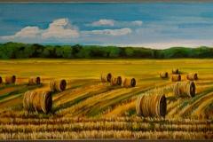 """""""Harvest"""" 12x24"""